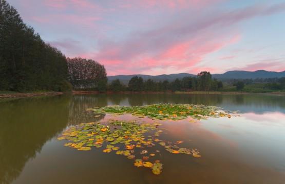 lago ginestre gambarie ecursioni